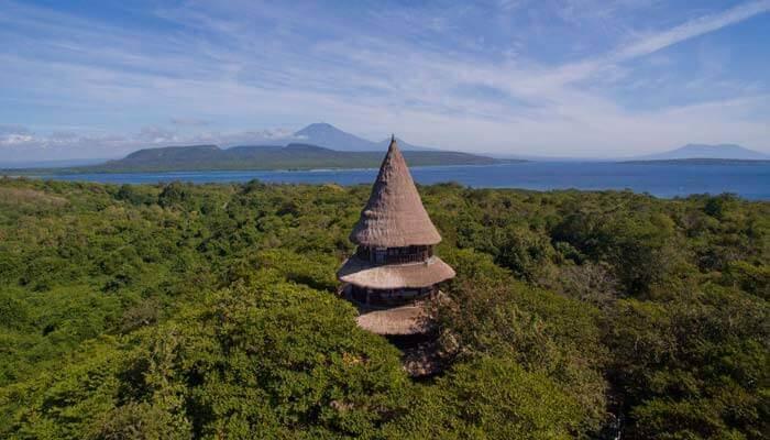 The Menjangan in West Bali