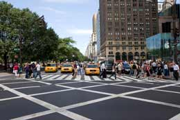 Five-star city guide to New York City